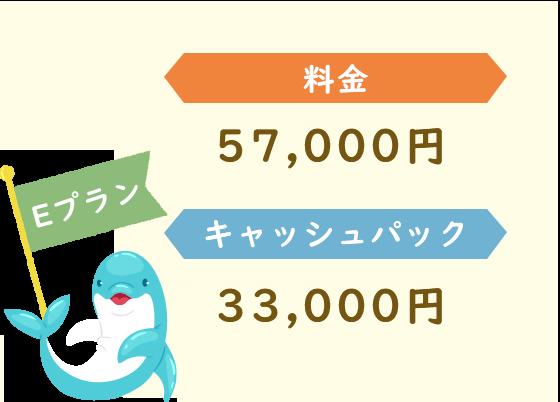 Eプラン 料金33,000円 キャッシュパック57,000円